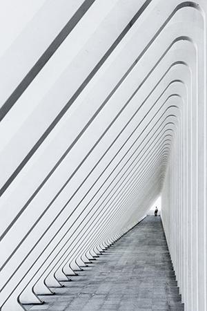 Estructura de hormigón de Santiago Calatrava