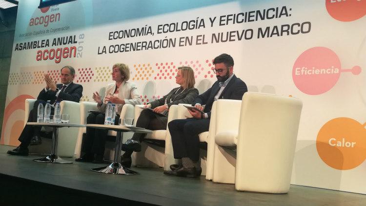 Economía, ecología y eficiencia: la cogeneración en el nuevo marco