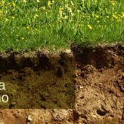 Taller de Casos Prácticos de Geotermia
