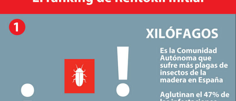 Plagas en La Rioja: Xilófagos