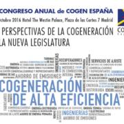 Programa del XII Congreso COGEN España