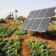 República Dominicana triplicaría su cuota de energías renovables en 2030