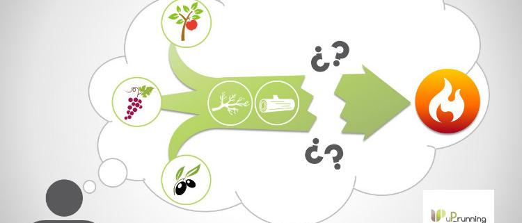 CIRCE organiza una jornada para promover la AGROBIOMASA en España