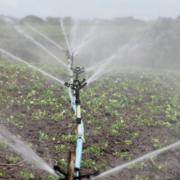 Eptisa implementa sistemas de riego a pequeña escala en Macedonia