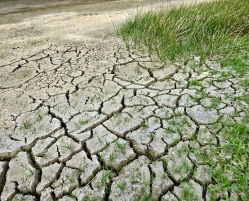 FIDEX defiende la construcción de infraestructuras para épocas de sequía