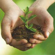 La energía consumida por ISOVER incorpora un Certificado Verde