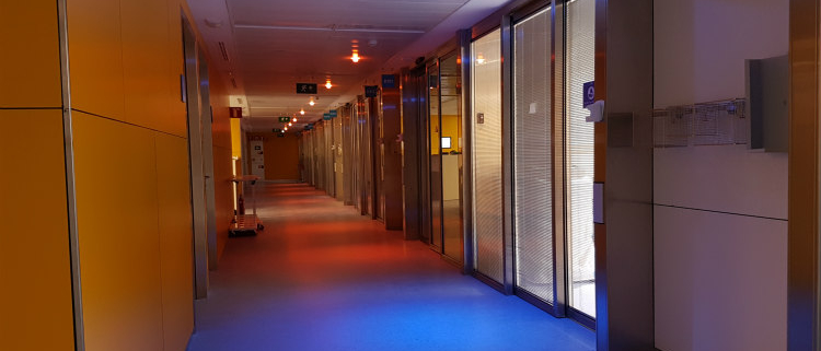 Beneficios de la luz natural en interiores gracias a LEDMOTIVE