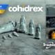 El material de desgaste Trasteel Wear Parts protagonista en bauma 2019 con Cohidrex