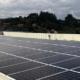 New Balance abre un parque fotovoltaico en su sede