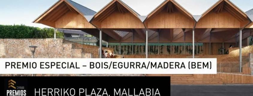 Jurado de Premios Egurtek 2020 da a conocer los proyectos ganadores