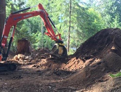 Empresas forestales se hacen camino con MB Crusher