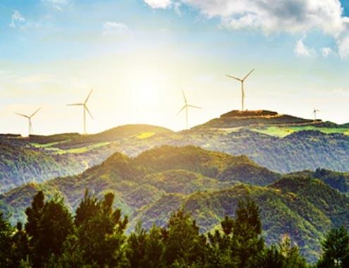 Concesión de 246 millones de euros en ayudas a proyectos renovables