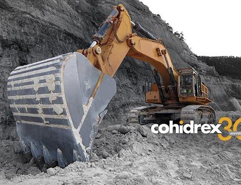 30 años dan para mucho, Cohidrex
