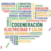 El XVI Congreso Anual de Cogeneración traslada su celebración a diciembre