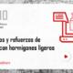 Webinar ARPHO: Recrecidos y refuerzos de forjados con hormigones ligeros