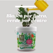 Blatem lanza Ecogreen, la pintura ecológica que no huele a nada
