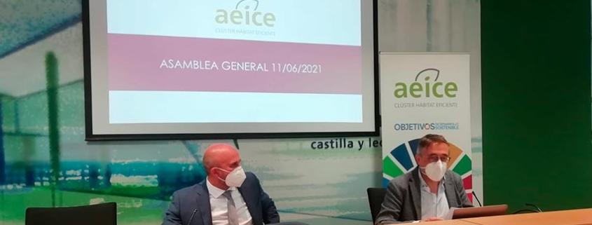Asamblea del Clúster de Hábitat Eficiente de Castilla y León, AEICE