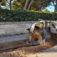 El Control remoto Bobcat aporta una nueva forma de trabajar