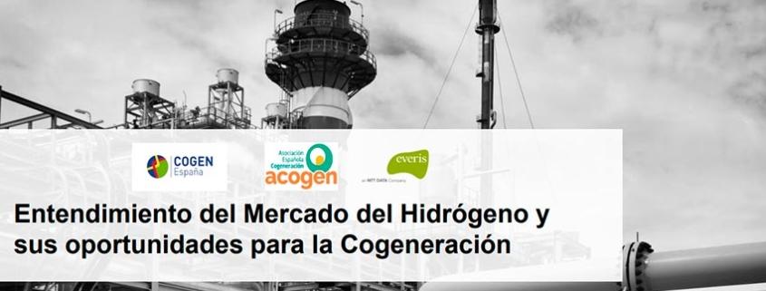 Entendimiento mercado hidrógeno y oportunidades para cogeneración