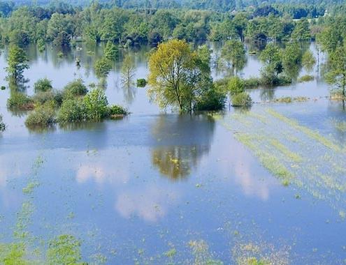 TECNIBERIA advierte sobre la necesidad de planificar e invertir para reducir daños de las inundaciones