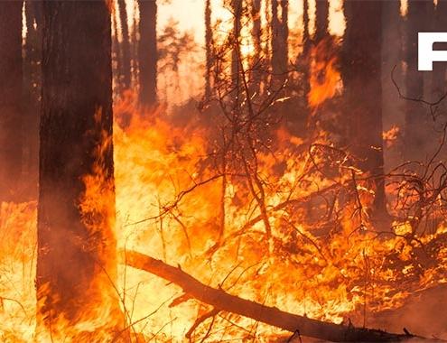 Saint-Gobain PAM: un gran aliado en la prevención de incendios
