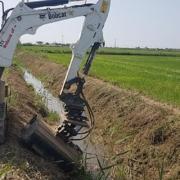 Limpieza de los arrozales con miniexcavadora Bobcat E26 en el Delta del Ebro
