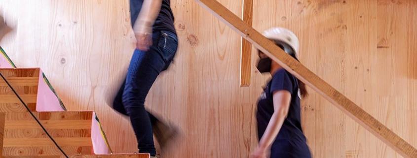 Proyecto KnoWood, más madera para construir la nueva Europa